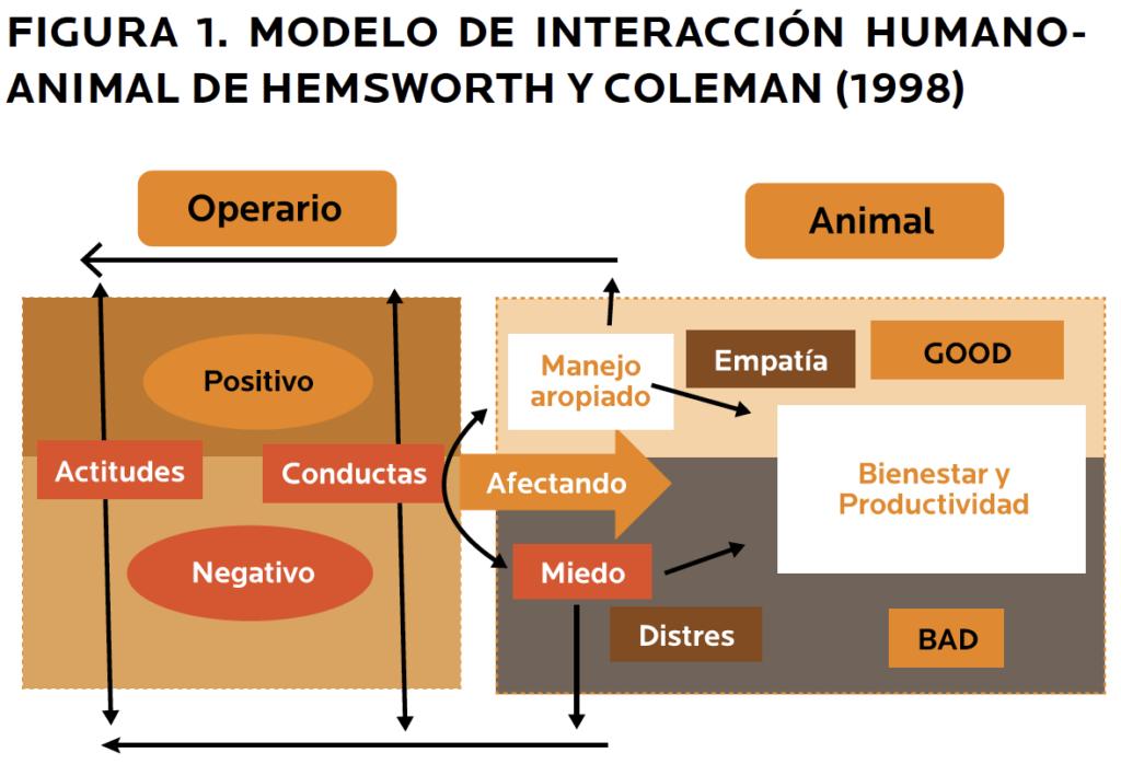FIGURA 1. MODELO DE INTERACCIÓN HUMANOANIMAL DE HEMSWORTH Y COLEMAN (1998)