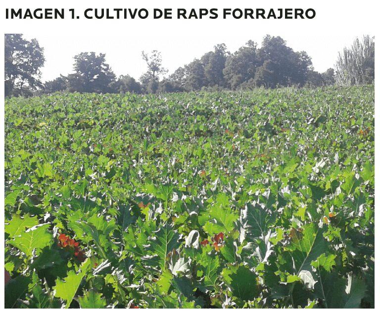 AGROCOLUN-55-agricola-1-imagen-1