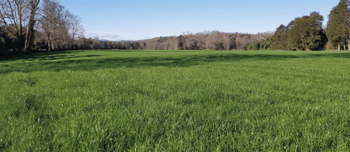 AGROCOLUN-55-agricola-imagen-0